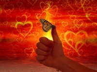 fluturii indragostirii vs dragoste matura